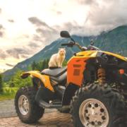 quad montenegro